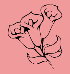 flower graphic design floral hand drawn vector image