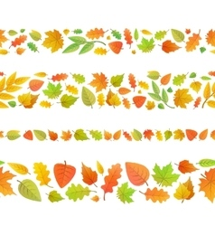 Four seamless borders made from cute autumn leaves vector
