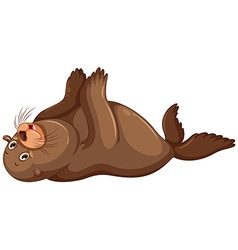 Sea lion flapping hands vector