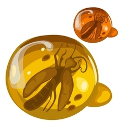 Ancient insect frozen in amber rare decoration vector image
