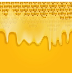 Dripping honey vector