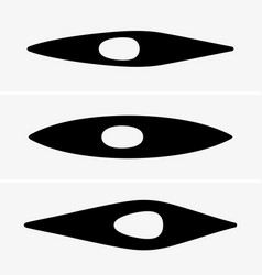 kayak vector image vector image
