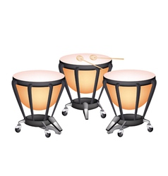 Three beautiful classical timpani vector