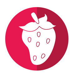 Strawberry fruit nutrition shadow vector