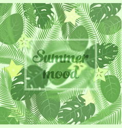 the summer mood lettering in a frame on the vector image