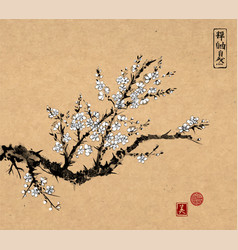 oriental sakura cherry tree in blossom on vintage vector image