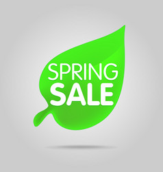 special offer sale green tag isolated vector image