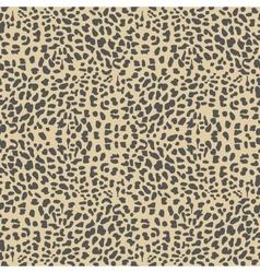 leopard background vector image
