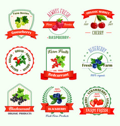 Berries icons for berry product labels vector