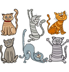 Funny cats set cartoon vector