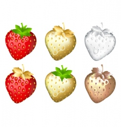 Strawberry set isolated on white vector