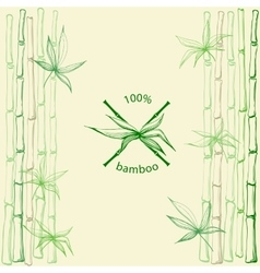 Hand drawn bamboo leaves with crossed stems vector