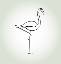 Flamingo in a minimal line style vector