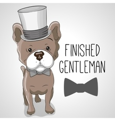 Dog in hat vector