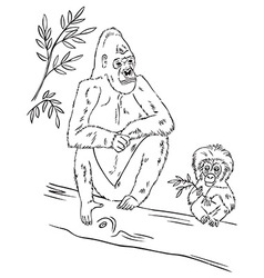 Gorilla family on tree vector