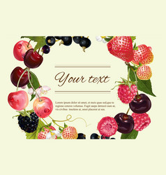 Berry horizintal banner vector image