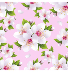 Seamless pattern background with sakura vector image vector image