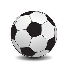 soccer ball on white background vector image vector image
