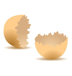 Cracked egg shell vector