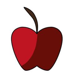 apple delicious fruit vector image vector image