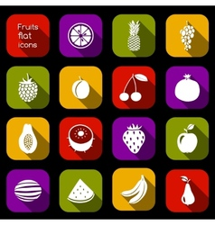 Fruits icons flat vector image vector image