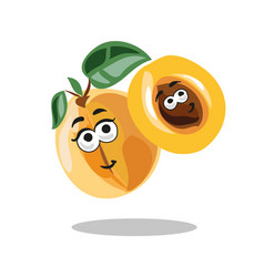 Fun cartoon apricot fruit character with leaf vector