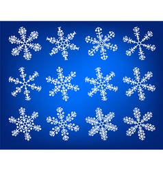 Snowflake white and blue winter set vector image