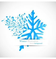 Snowflake with debris vector