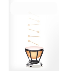 Classical Timpani with Sticks on White Background vector image vector image