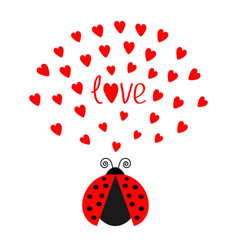 Red flying lady bug insect with hearts cute vector