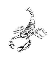 Aggressive black and white Scorpion for tattoos vector image vector image