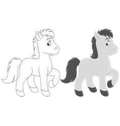 Foal vector