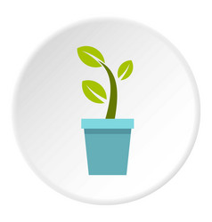 Pot tree icon circle vector