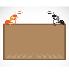 School blackboard with ant vector image vector image