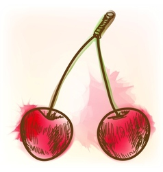 Ripe cherry watercolor painting vector