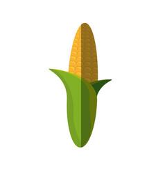 Corn cereal grain food shadow vector