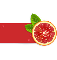Fresh red orange vector