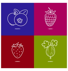 StrawberryRaspberriesBlueberriesGooseberry vector image