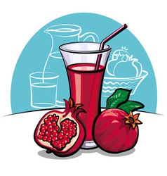 Pomegranate juice vector
