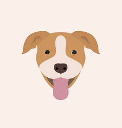 American pitbull terrier portrait vector