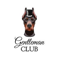 doberman pinscher dog with top hat vector image vector image