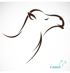 image of an camel vector image