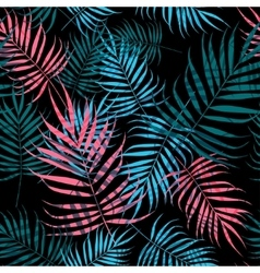 Palm tree foliage vector