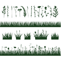 Silhouettes meadow grass vector