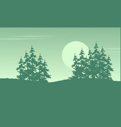 Spruce on the hill scenery vector