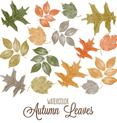 Set of watercolor colorful autumn leaves vector