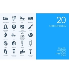 Set of blue hamster library orthopedics icons vector