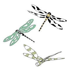 Set of three flying dragonflies isolated on vector