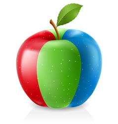 delicious rgb apple vector image vector image