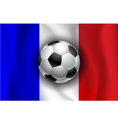 France flag with soccer balls vector image